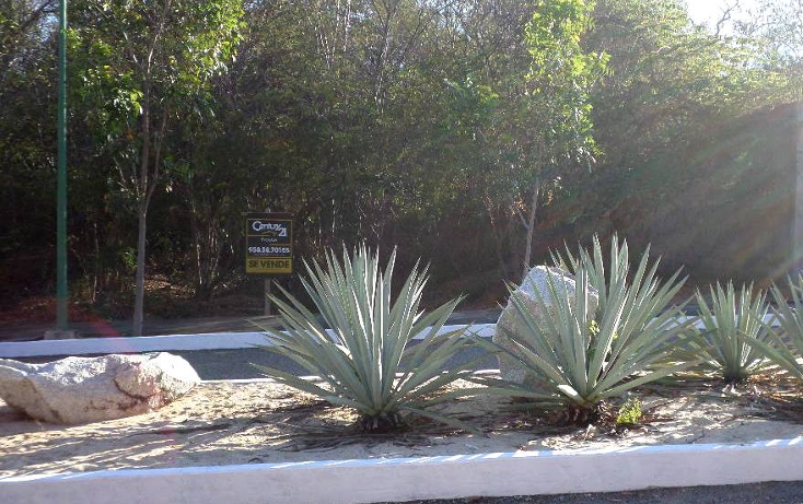 Foto de terreno habitacional en venta en  , bahía de conejo, santa maría huatulco, oaxaca, 1198303 No. 02