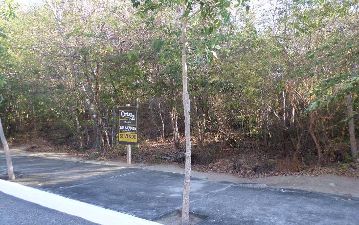 Foto de terreno habitacional en venta en  , bahía de conejo, santa maría huatulco, oaxaca, 1198303 No. 03