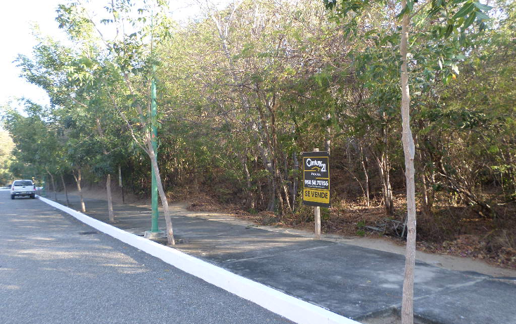 Foto de terreno habitacional en venta en  , bahía de conejo, santa maría huatulco, oaxaca, 1198303 No. 04