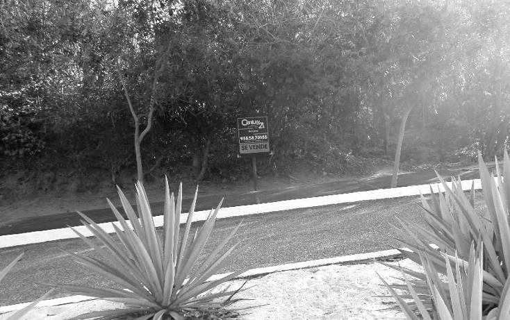 Foto de terreno habitacional en venta en  , bahía de conejo, santa maría huatulco, oaxaca, 1278089 No. 04
