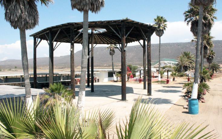 Foto de terreno comercial en venta en  , bajamar, ensenada, baja california, 1192089 No. 06