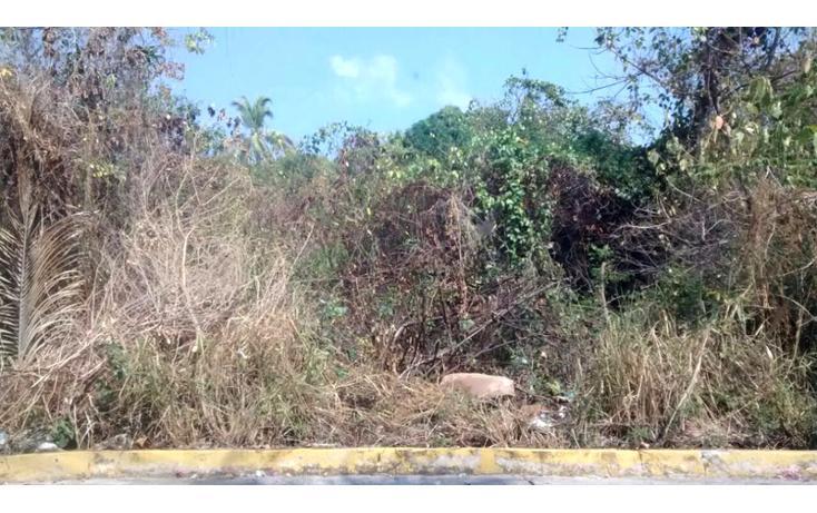 Foto de terreno habitacional en venta en  , balcones al mar, acapulco de juárez, guerrero, 1864472 No. 05