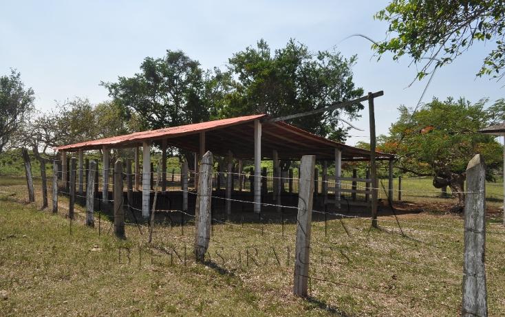 Foto de rancho en venta en  , banderas, tuxpan, veracruz de ignacio de la llave, 1080809 No. 08