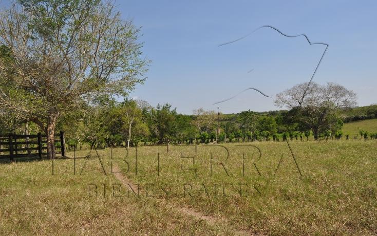 Foto de rancho en venta en  , banderas, tuxpan, veracruz de ignacio de la llave, 1080809 No. 09