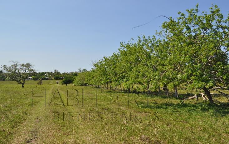 Foto de rancho en venta en  , banderas, tuxpan, veracruz de ignacio de la llave, 1080809 No. 10