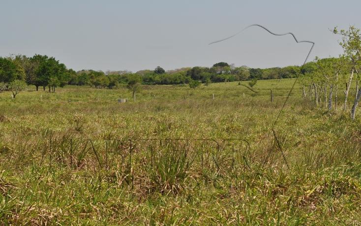 Foto de rancho en venta en  , banderas, tuxpan, veracruz de ignacio de la llave, 1080809 No. 14