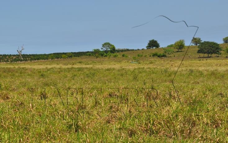 Foto de rancho en venta en  , banderas, tuxpan, veracruz de ignacio de la llave, 1080809 No. 16
