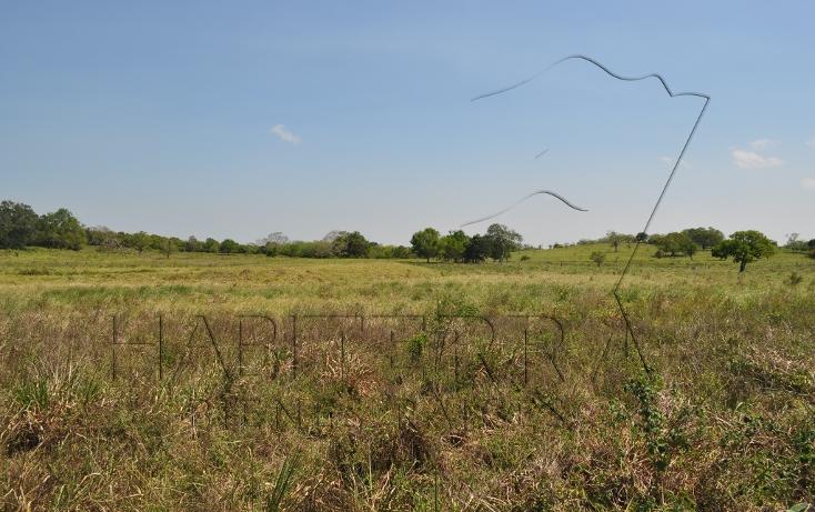 Foto de rancho en venta en  , banderas, tuxpan, veracruz de ignacio de la llave, 1080809 No. 18