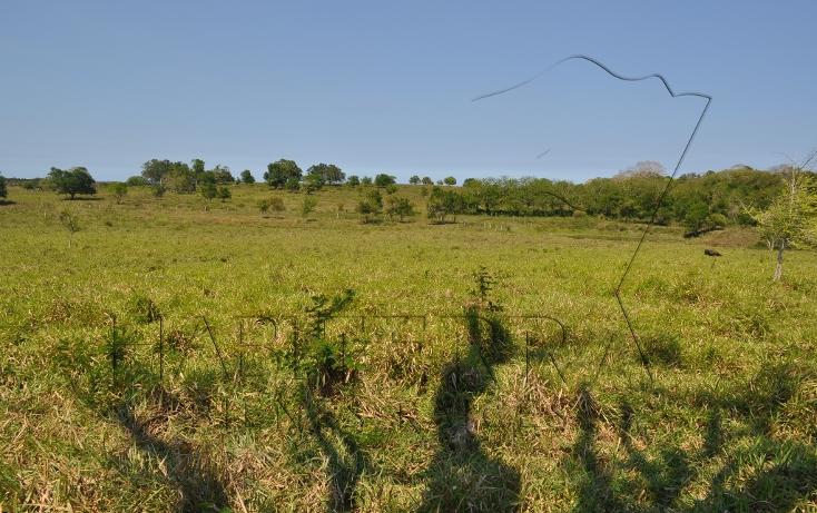 Foto de rancho en venta en  , banderas, tuxpan, veracruz de ignacio de la llave, 1080809 No. 24
