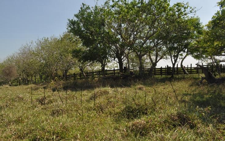 Foto de rancho en venta en  , banderas, tuxpan, veracruz de ignacio de la llave, 1080809 No. 25