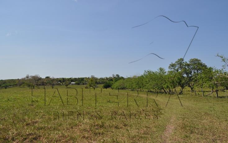 Foto de rancho en venta en  , banderas, tuxpan, veracruz de ignacio de la llave, 1080809 No. 27