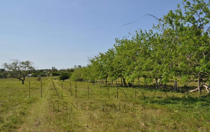 Foto de rancho en venta en  , banderas, tuxpan, veracruz de ignacio de la llave, 1080809 No. 28