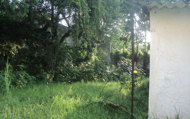 Foto de terreno habitacional en venta en, banderilla centro, banderilla, veracruz, 1769562 no 03