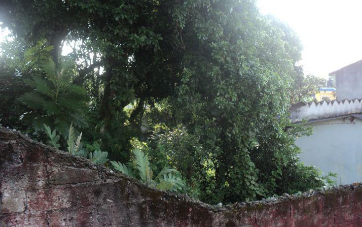 Foto de terreno habitacional en venta en, banderilla centro, banderilla, veracruz, 1769562 no 06