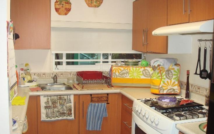 Foto de casa en venta en  , banus, alvarado, veracruz de ignacio de la llave, 1127173 No. 05