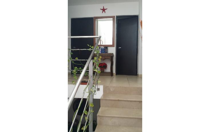Foto de casa en venta en  , banus, alvarado, veracruz de ignacio de la llave, 1243067 No. 14