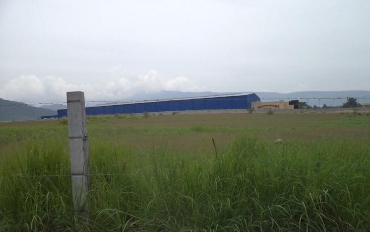 Foto de terreno comercial en venta en  , banus, tlajomulco de zúñiga, jalisco, 1300929 No. 07