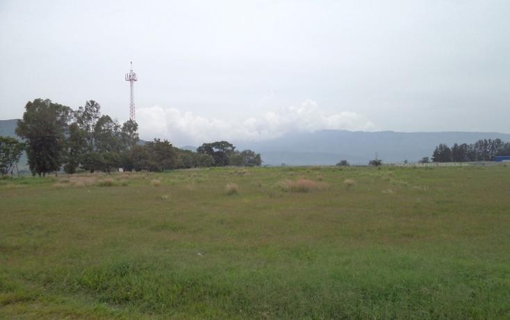 Foto de terreno comercial en venta en  , banus, tlajomulco de zúñiga, jalisco, 1300929 No. 09