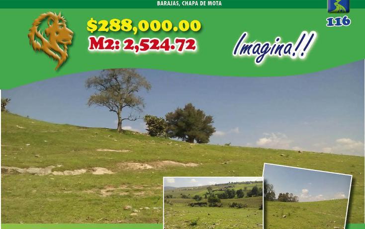 Foto de terreno habitacional en venta en  , barajas, chapa de mota, méxico, 2045447 No. 01