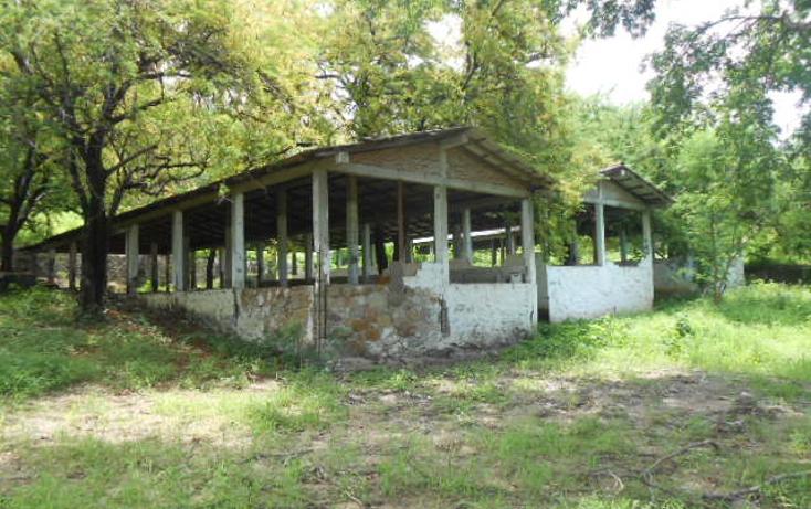 Foto de terreno habitacional en venta en  , barra de coyuca, coyuca de benítez, guerrero, 1057979 No. 06