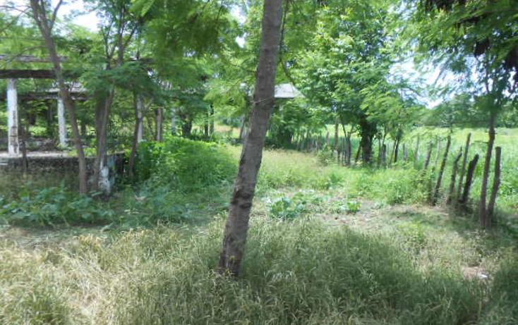 Foto de terreno habitacional en venta en  , barra de coyuca, coyuca de benítez, guerrero, 1057979 No. 11