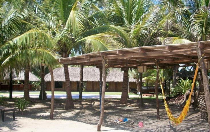 Foto de casa en renta en  , barra vieja, acapulco de juárez, guerrero, 1833624 No. 09