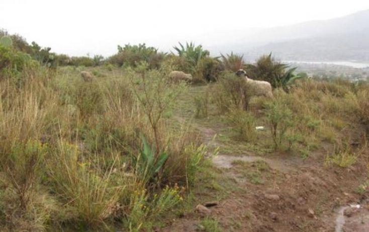 Foto de terreno habitacional en venta en barrio de cerro picacho, xolostitla de morelos xolostitla, epazoyucan, hidalgo, 419690 no 04