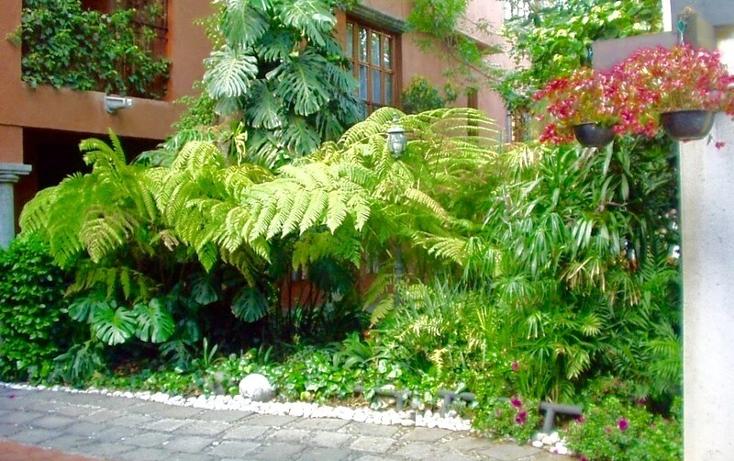 Foto de casa en renta en  , barrio del ni?o jes?s, coyoac?n, distrito federal, 1507107 No. 13
