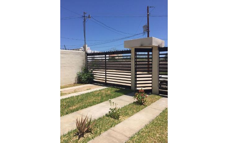Foto de casa en renta en  , barrio el manglito, la paz, baja california sur, 1296771 No. 10