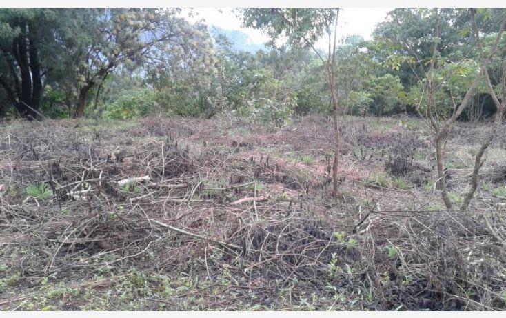 Foto de terreno habitacional en venta en barrio san josé, san josé, tepoztlán, morelos, 1473459 no 03