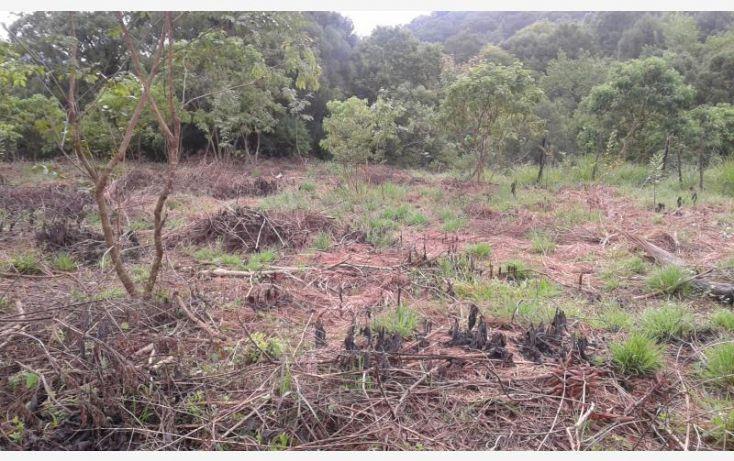 Foto de terreno habitacional en venta en barrio san josé, san josé, tepoztlán, morelos, 1473459 no 04