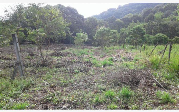 Foto de terreno habitacional en venta en barrio san josé, san josé, tepoztlán, morelos, 1473459 no 13