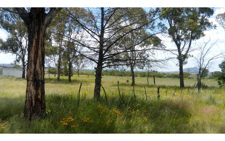 Foto de terreno habitacional en venta en  , batha y barrios, nopala de villagr?n, hidalgo, 1140725 No. 01