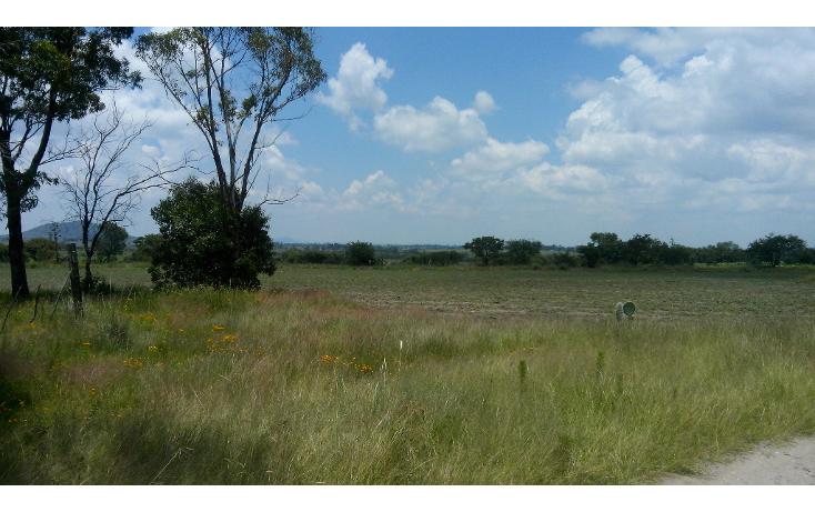 Foto de terreno habitacional en venta en  , batha y barrios, nopala de villagr?n, hidalgo, 1140725 No. 04