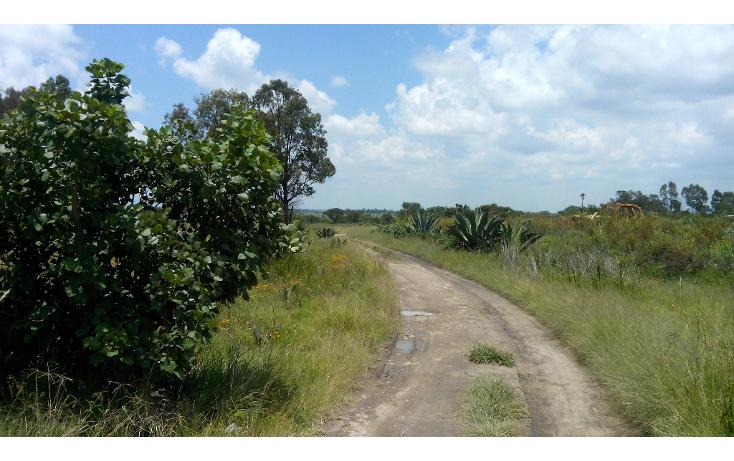 Foto de terreno habitacional en venta en  , batha y barrios, nopala de villagr?n, hidalgo, 1140725 No. 13