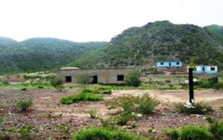 Foto de rancho en venta en belisario dominguez, progreso macuiltepetl, xalapa, veracruz, 397406 no 02