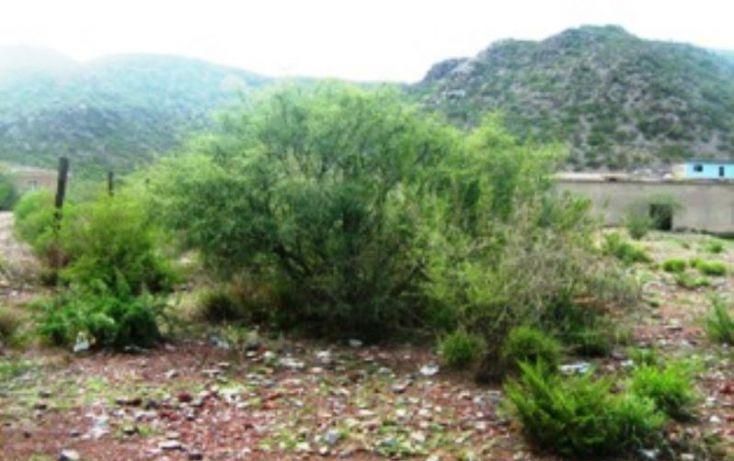 Foto de rancho en venta en belisario dominguez, progreso macuiltepetl, xalapa, veracruz, 397406 no 10