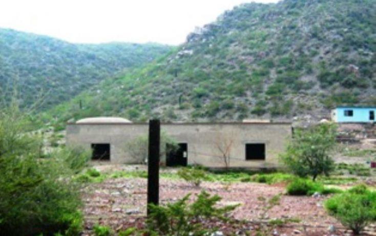 Foto de rancho en venta en belisario dominguez, progreso macuiltepetl, xalapa, veracruz, 397406 no 11