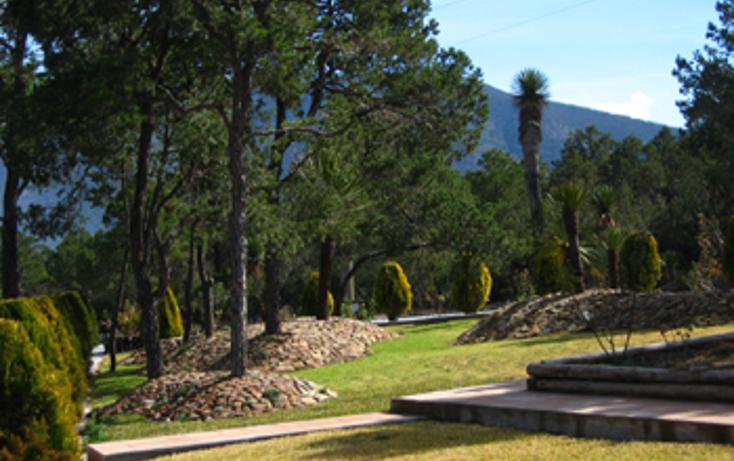 Foto de terreno habitacional en venta en  , bella unión, arteaga, coahuila de zaragoza, 1502007 No. 02