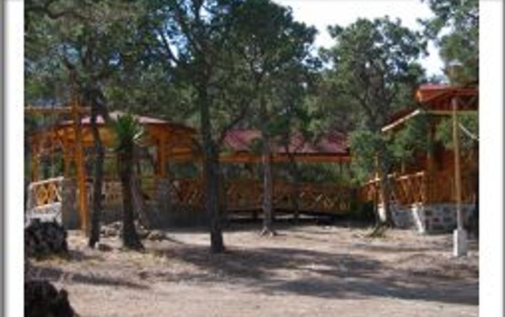 Foto de terreno habitacional en venta en  , bella unión, arteaga, coahuila de zaragoza, 1502007 No. 06