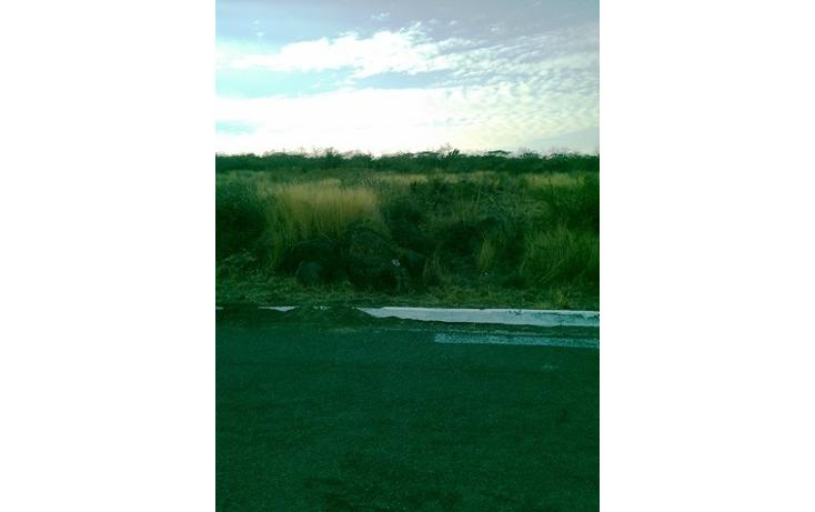 Foto de terreno habitacional en venta en  , bellavista, irapuato, guanajuato, 1857220 No. 01