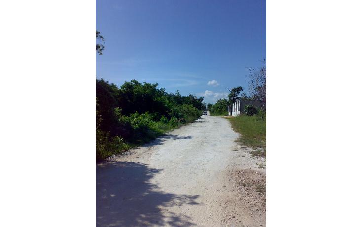 Foto de terreno habitacional en renta en  , bellavista, solidaridad, quintana roo, 1277463 No. 01