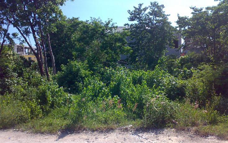 Foto de terreno habitacional en renta en  , bellavista, solidaridad, quintana roo, 1277463 No. 02