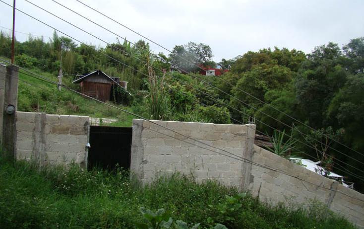 Foto de terreno habitacional en venta en  , bellavista, xalapa, veracruz de ignacio de la llave, 1281479 No. 01
