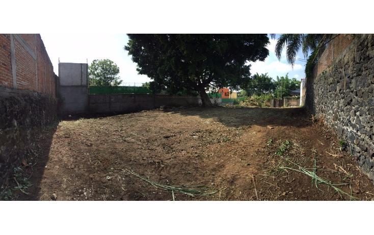 Foto de terreno habitacional en venta en  , bello horizonte, cuernavaca, morelos, 1703276 No. 05