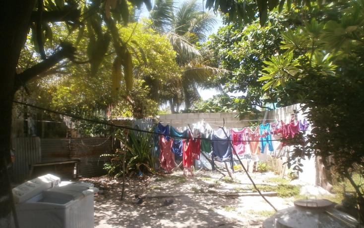 Foto de terreno habitacional en venta en  , benito juárez, carmen, campeche, 1283487 No. 05