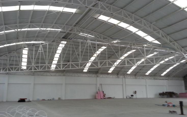 Foto de nave industrial en renta en  , benito juárez centro, juárez, nuevo león, 1246875 No. 07