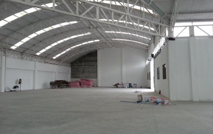 Foto de nave industrial en renta en  , benito juárez centro, juárez, nuevo león, 1246875 No. 10