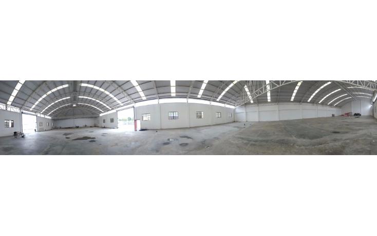Foto de nave industrial en renta en  , benito juárez centro, juárez, nuevo león, 1611564 No. 05