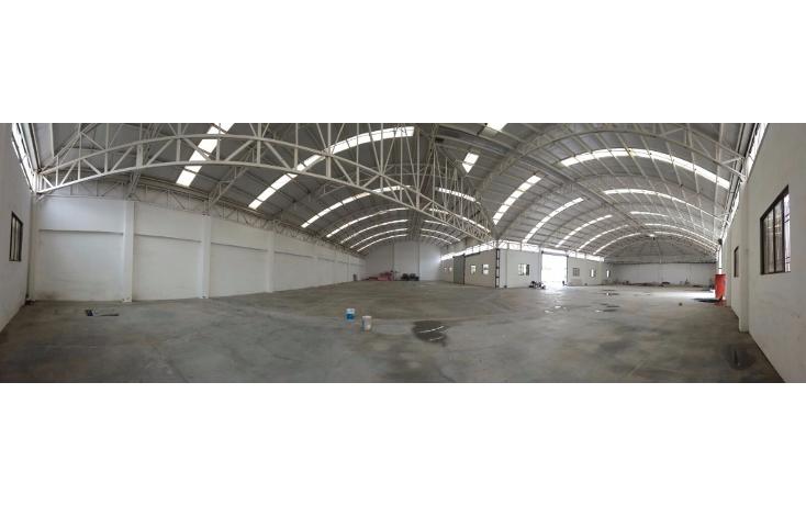 Foto de nave industrial en renta en  , benito juárez centro, juárez, nuevo león, 1611564 No. 11